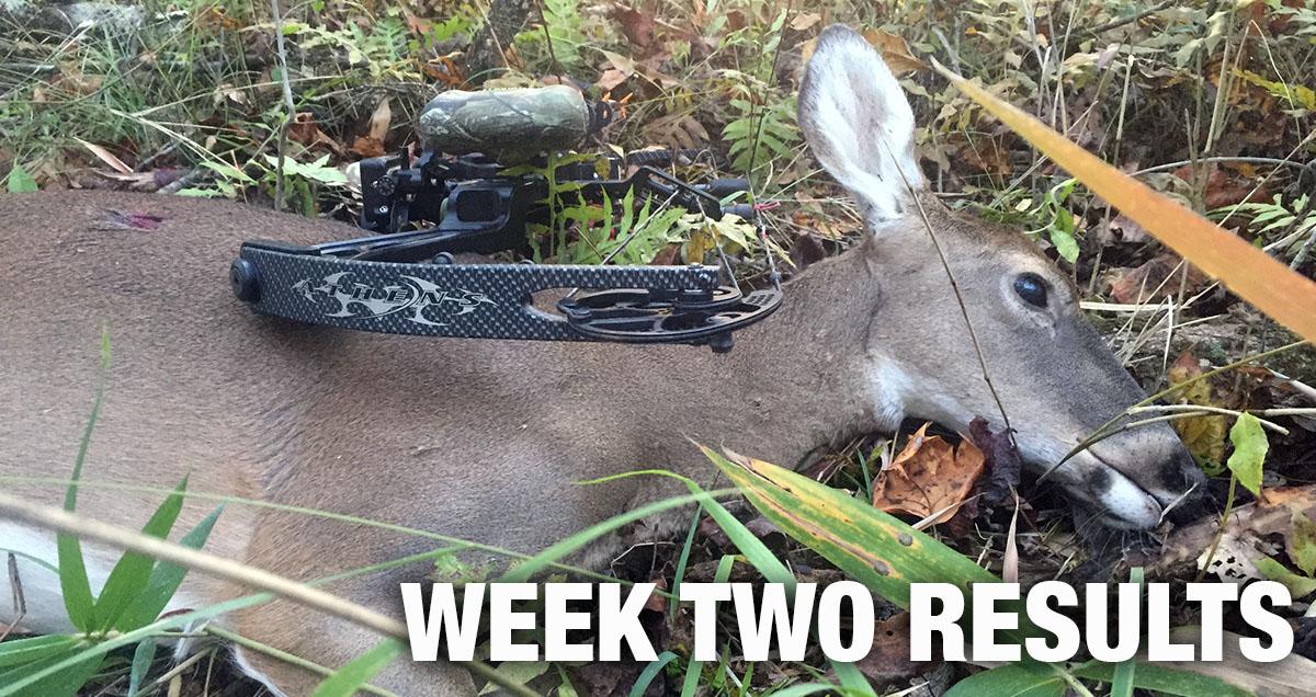 Georgia Deer Archery Season Opens Saturday – Outdoor News ...